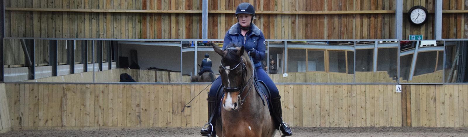 shawfarm_equestrian_new_slider_4